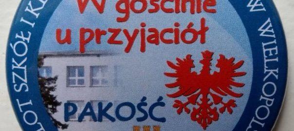 Okolicznościowa plakietka XIV Zlotu Szkół i Klubów im. Powstańców Wielkopolskich (612x600)